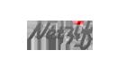 netzif.com